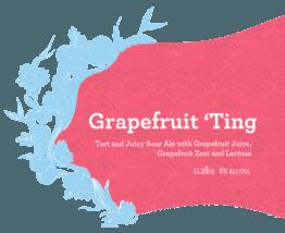 Buy Siren Grapefruit Ting 330ml Online